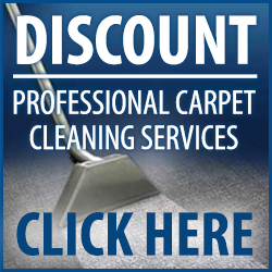 discount carpet cleaners pro Houston